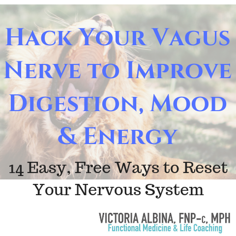 vagus nerve fight or flight