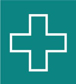 healthcoachicon